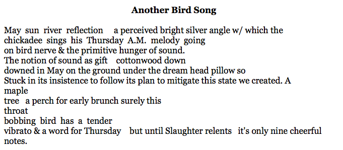 Another Bird Song