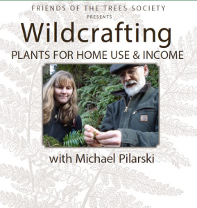 Wildcrafting With Michael Pilarski