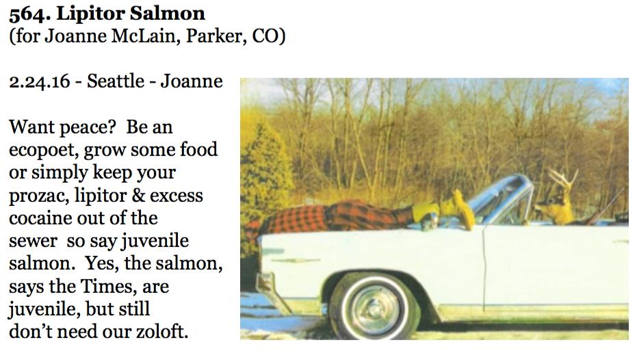 564. Lipitor Salmon