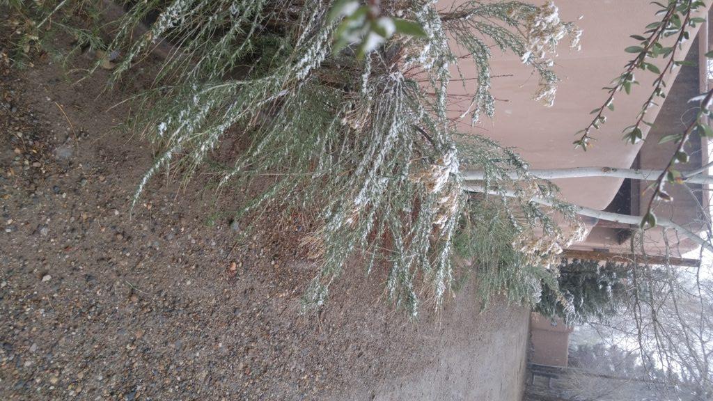 April Taos Snow